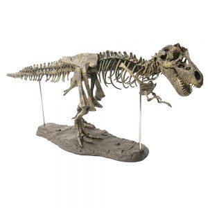 Delly 3D 28″/70cm PVC Assembling Skeleton Dinosaur Simulation Animal Model Toys Gifts Children Educational Science Toy DSA-01